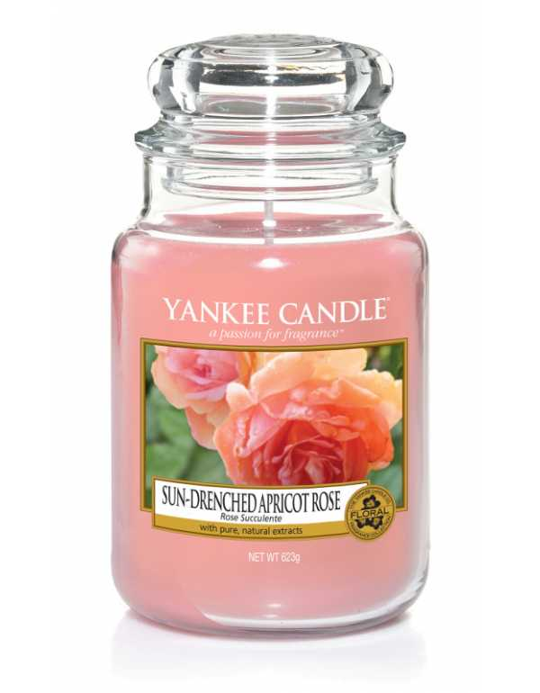 CLASSIC LARGE JAR SUN-DRENCHED APRICOT ROSE